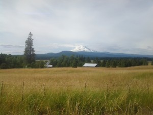Mt. Adams and the Conboy National Wildlife Refuge