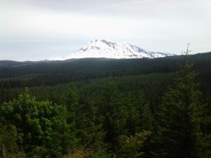 Mt. Adams on the 23 Road climb